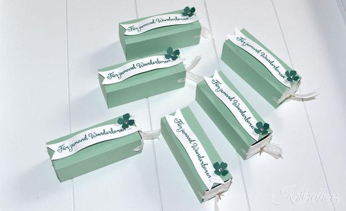 Lippenpflegeverpackung_Minzmakrone_stampin_up_linz_oesterreich_oberoesterreich_naturkosmetik_workshop_verpackung